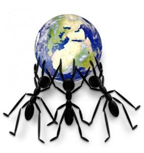 Hormigas -mundo